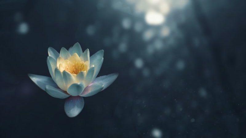 ストレスを解消する瞑想法のやり方