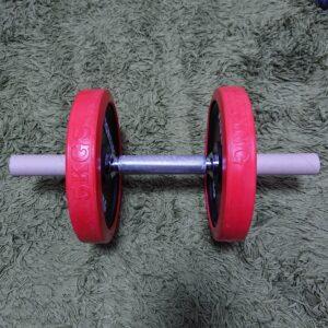腹筋ローラーをダンベルで代用する方法2